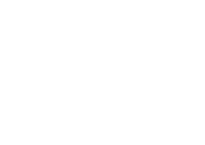 BPESA full logo transparent-05